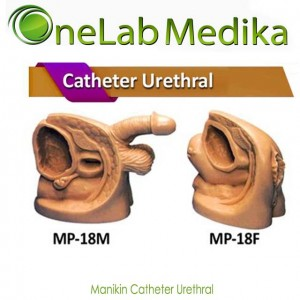 Manikin Catheter Urethral
