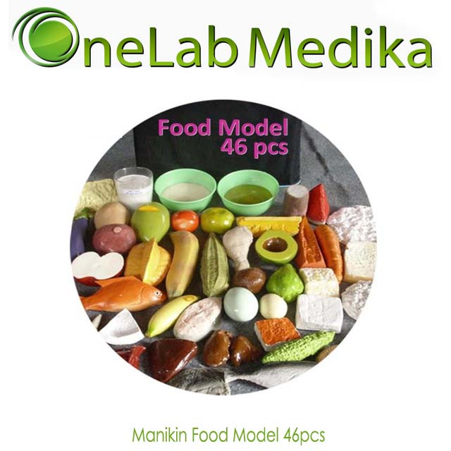 Manikin Food Model 46pcs