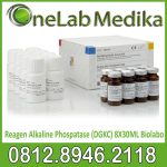 Reagen Alkaline Phospatase (DGKC) 8X30ML Biolabo