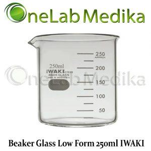 Jual Beaker Glass Low Form 250ml IWAKI